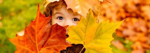 Quelles activités à faire avec l'enfant ou bébé en automne ?