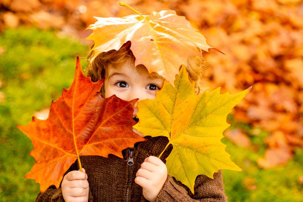 Il existe de multiples activités à faire avec bébé et l'enfant à l'automne.