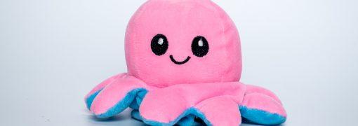 Journée mondiale du poulpe : des idées pour s'amuser avec l'enfant autour de la pieuvre !